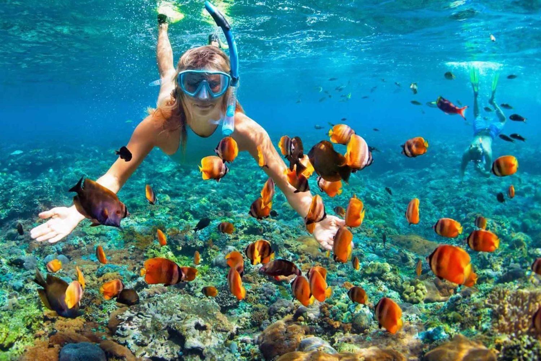 plongée isla mujeres