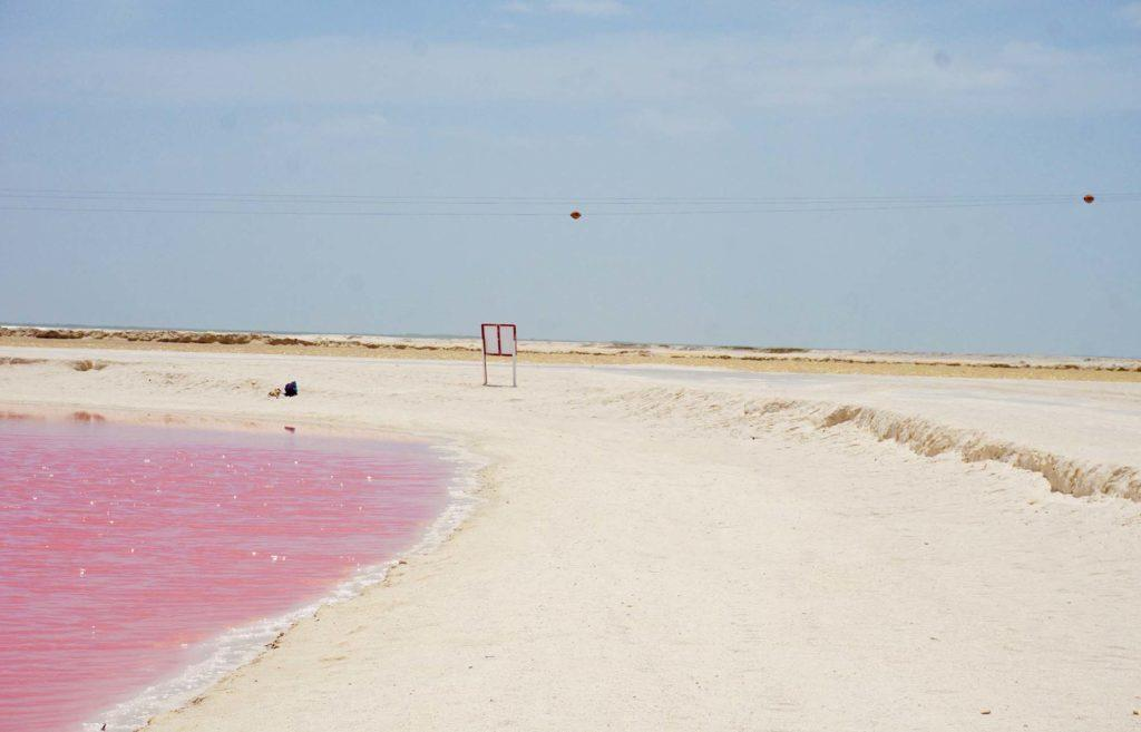 Las Coloradas excursion