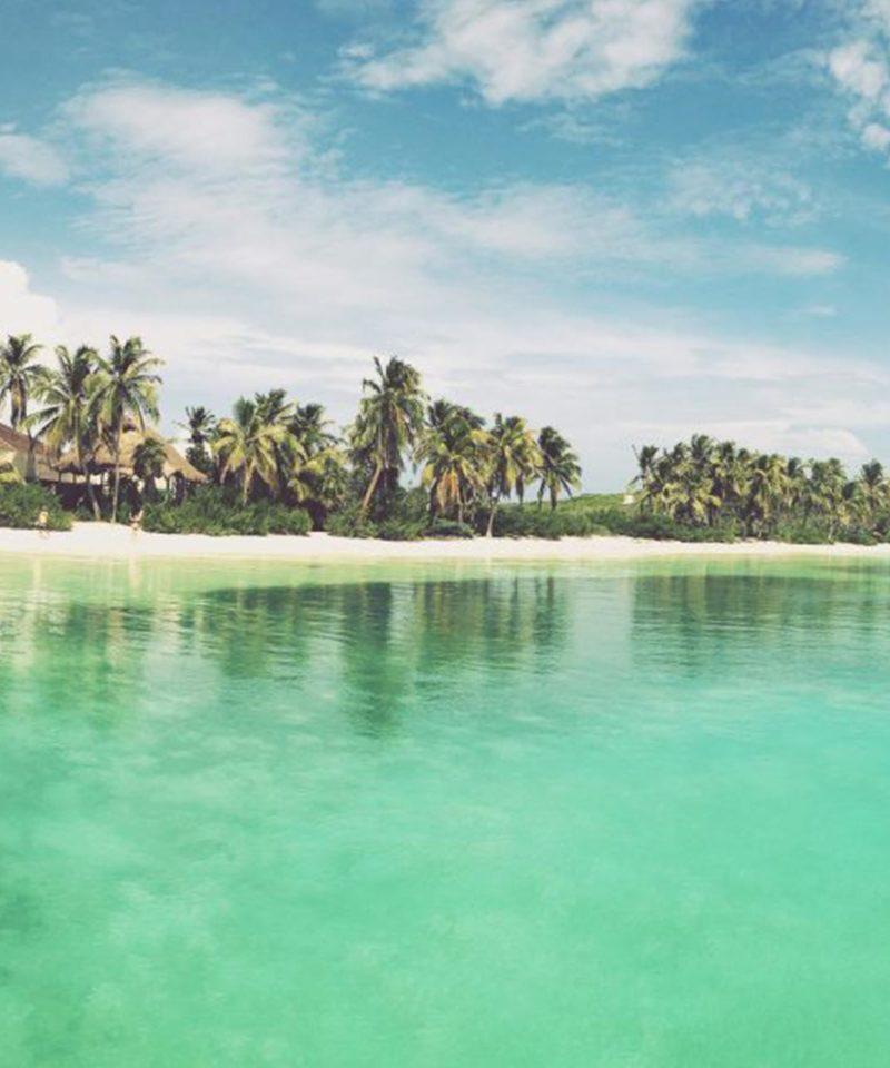 isla contoy francais