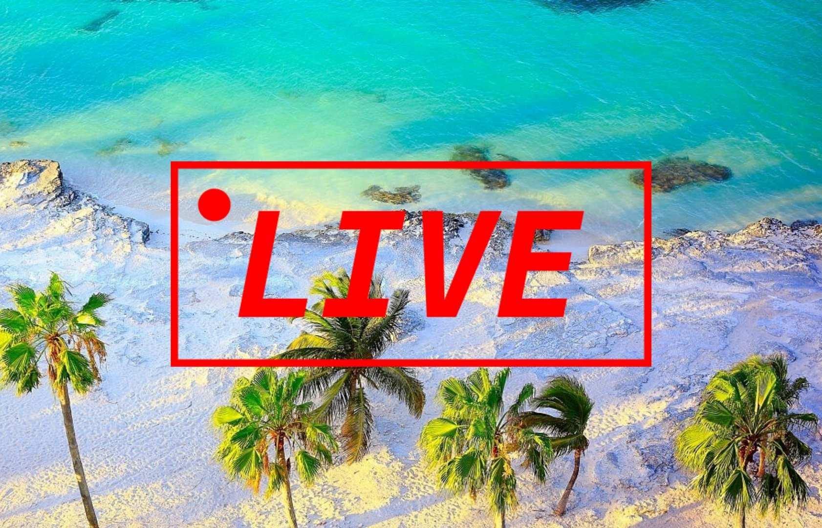 webcam playa del carmen
