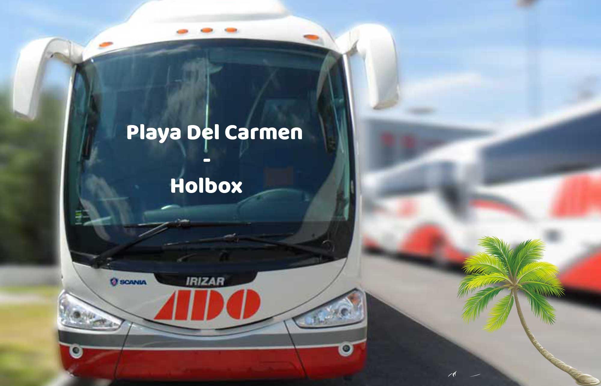 aller à Holbox de Playa Del Carmen